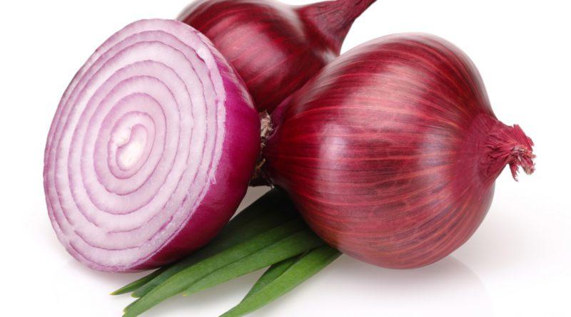 4244397-onion